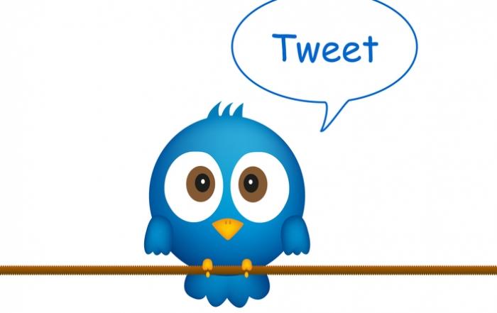 Blue bird sitting on rope, singing